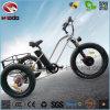 도매 500W 전기 자전거 건전지 페달을%s 가진 뚱뚱한 타이어 세발자전거