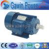 Motor de inducción asíncrono trifásico de la serie de la eficacia alta Y