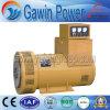 generador síncrono trifásico de la excitación de la fase de la repetición del alternador de 250kVA Tzh