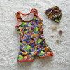 La alta elasticidad embroma traje de baño del muchacho en el precio bajo