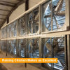 Ventilatore di scarico di piccola dimensione di ventilazione del pollame per l'azienda agricola di pollo