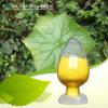 Poudre de haute qualité de la quercétine (CAS : 117-39-5)