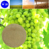 Fertilizzante della polvere 52% dell'amminoacido del fertilizzante organico