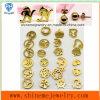 [شينم] نمو مجوهرات [ستينلسّ ستيل] عمليّة تصفيح نوع ذهب أذن دعامة