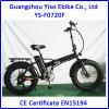 Neumático gordo de Italia de 20 pulgadas plegable la bici eléctrica