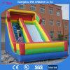 Lato gonfiabile personalizzato di colore e di formato per il parco di divertimenti
