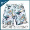Os Mens de Inone W032 nadam calças curtas dos Shorts ocasionais da placa