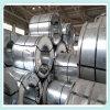 304/304L/316/316L/321/309S/310S/904L/202/201/430 laminato a freddo la bobina dello strato dell'acciaio inossidabile