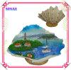Mestiere Sinal del ricordo, decorazione del Seashell della spiaggia della resina