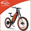 Alta qualità Downhill Ebike con Rear Motor per Exercise (LMTDF-33L)