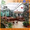 Moderno invernadero de vidrio para el restaurante ecológico, invernadero de vidrio utilizado para la venta caliente con alta calidad