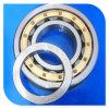 Fabrik-Lieferanten-Qualitäts-zylinderförmige Rolle Beairng Nup314