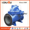 Pompa ad acqua centrifuga di doppia aspirazione