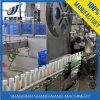 Línea de Producción Láctea / Planta Procesadora de Leche