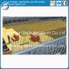 A instalação fácil molde personalizado da laje da madeira compensada de China