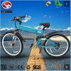 油圧中断が付いている卸し売り合金フレームの電気自転車