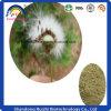 Extracto herbario de la raíz del diente de león de la fuente del comerciante de los productos