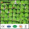 2015熱い販売PVC許可の緑の人工的な草の塀