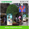 Chipshow 상업적인 P5.33 풀 컬러 발광 다이오드 표시 광고