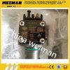 Pomp van de brandstofinjectie (eenheidspomp) 4110001009024 Shandong Lingong