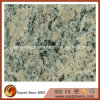 Imported Cream Violet Granite Bathroom/Kitchen Tile