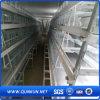 Plástico de alta calidad de la jaula de pollo