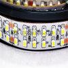 중국 제조자 새로운 LED 84LED/M 2835 Bande De LED