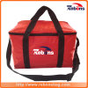 Outdoor Isolated EPE Foam Cheap Commercial Picnic Cooler Bag
