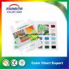 Carta do cartão da cor do revestimento da decoração da boa qualidade