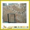 Galettes d'or Polished de granit de Persa pour la partie supérieure du comptoir/Vanitytop/plancher/le pavage