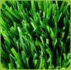 50mm Höhe füllender PET künstlicher Rasen für Fußballplatz