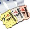 Médaille argentée de sport de récompense de karaté de Shotokan de judo du Japon