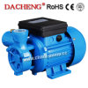 DB Cast Iron Water Pump mit CER Approved