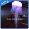 Fase de evento de decoração casamento festa balão Medusa insuflável de LED