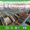 Niveladora del tomate estándar Ce/ISO9001