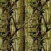 La nueva llegada Kingtop el 1m camufla de par en par y energía hidraúlica del árbol PVA que sumerge la película hidrográfica imprimible Tmy1004 de la impresión de la transferencia del agua