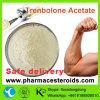 야윈 근육 얻기를 위한 Trembolone 신진대사 스테로이드 분말 Trenbolone 아세테이트