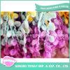 Hilado de Lujo Teñido Espacio del Bucle del Boucle del Arco Iris para la Bufanda de las Mujeres