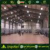 Construction préfabriquée de gymnase d'envergure de longue vie (LS-GS-08)