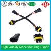 Automobile Wire Harness per HID LED Foglight Head Light LED Light