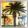 Оптовая торговля оформление искусственных открытый Дата Palm Tree