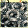 Venda por grosso de aço carbono revestido personalizado de Zn Elevação Fixadores fora do padrão