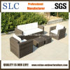 Установленная софа напольной софы установленная/софа мебели (SC-B9508-H)
