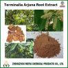 Extrait de poudre de Terminalia Arjuna avec de l'acide d'Arjunolic/tannin 5% -20%