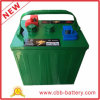 Batteria Trojan T105, batteria del carrello di golf, accumulatore per degli S.U.A. di automobile di golf 6V225ah