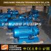 Yonjou horizontale zentrifugale Wasser-Pumpe