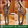 Lingerie sexy résille Bodystocking avec conception Hollow Out