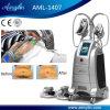 Zwei Seiten Lovehandle Behandlung-fette Gefriehrmaschine