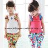 아이들 옷에 있는 면 소매 없는 소녀의 다채로운 T-Shirt+Pants