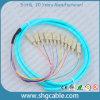 12 tresse optique de fibre de groupe du faisceau Sc/Upc-50/125um Om3 millimètres